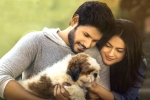 Ninu Veedani Needanu Nene Movie Review, Rating, Story